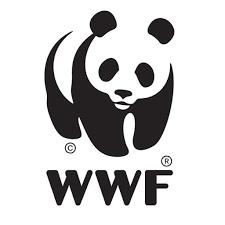 Efficienza Energetica: il WWF Apre uno Sportello di Consulenza